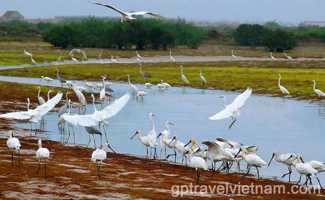 Aventure dans la Campagne du Delta du Fleuve Rouge – 2 jours:  VEXN02